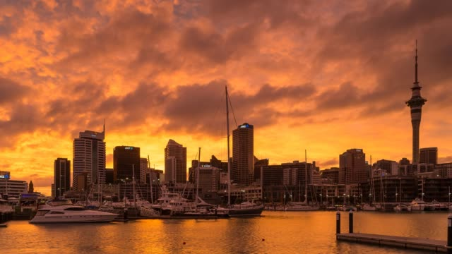 Awesome rising sun over Wellington city, New Zealand