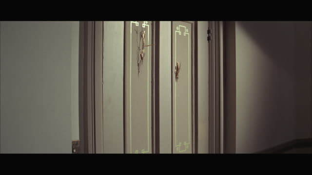 stockvideo's en b-roll-footage met ms axe blades chopping into door panel / chicago, illinois, usa  - bijl