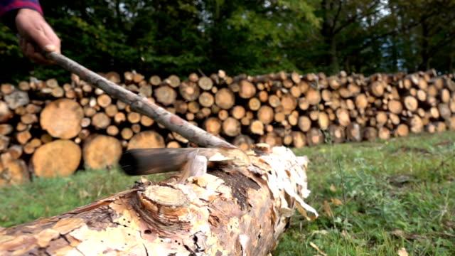 Axe Chopping Wood Log