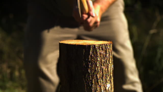 axe splitting a log on a sunny day - 6000fps (240x slowed down) - dividere video stock e b–roll