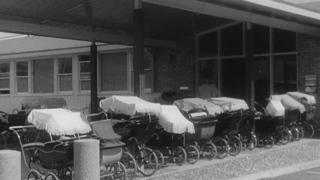montage babies in carriages / harlow, england, united kingdom - pushchair stock videos and b-roll footage