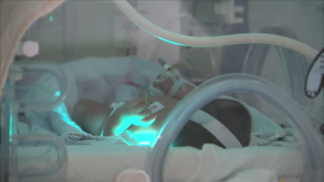 baby at hospital inside an incubator - care stock videos & royalty-free footage
