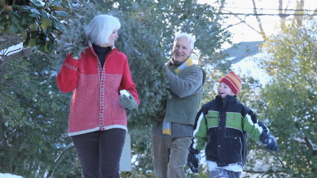 MS TU Baby Boomer couple and grandson (8-9) carrying Christmas tree and throwing snowballs / Richmond, Virginia, USA