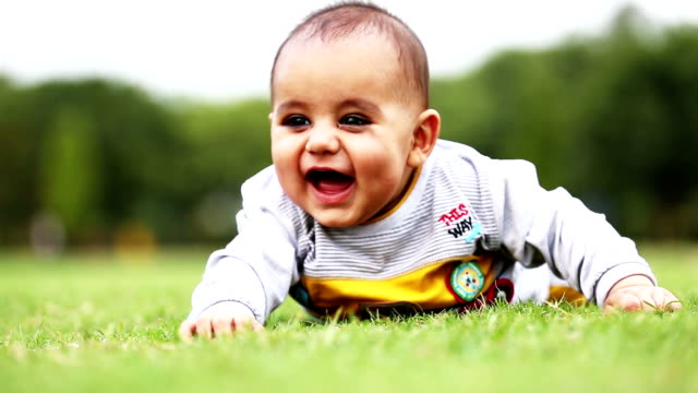 baby boy crawling in the nature - crawling stock videos & royalty-free footage