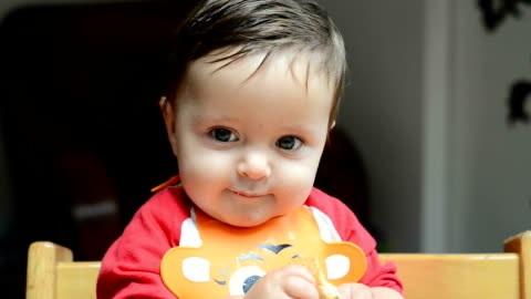 baby boy eating bread - one baby boy only stock videos & royalty-free footage