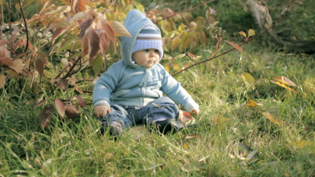 baby boy in the garden - endast en pojkbaby bildbanksvideor och videomaterial från bakom kulisserna