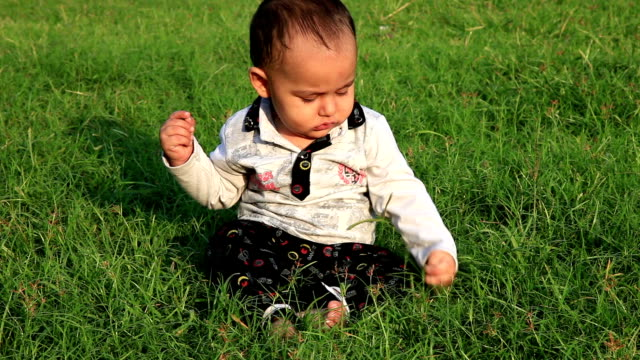 baby boy playing in the park during sunset - 0 11 mesi video stock e b–roll