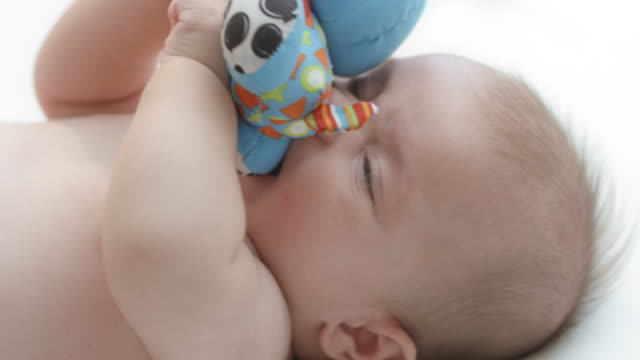 baby boy putting a toy in his mouth - lying on back stock videos & royalty-free footage