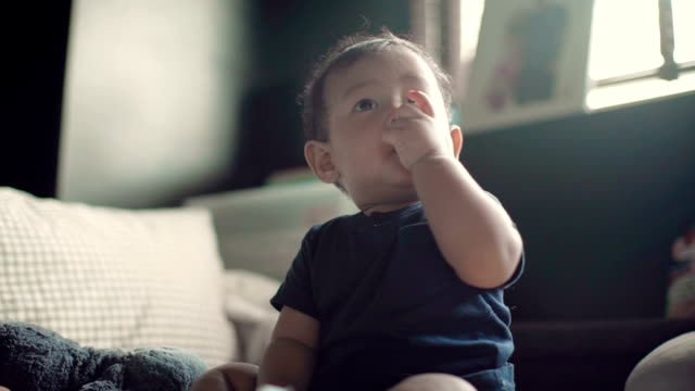 a baby boy sitting and crawling on a bed indoors - one baby boy only stock videos & royalty-free footage