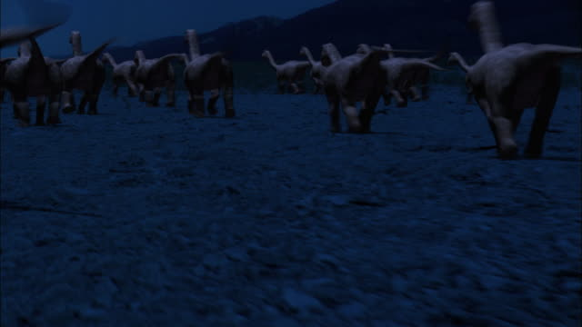 cgi, ms, ds, baby brontosauruses running through field at night, rear view - paleozoology stock videos and b-roll footage