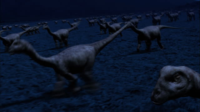 cgi, ws, ds, baby brontosauruses running through field at night - paleozoology stock videos and b-roll footage