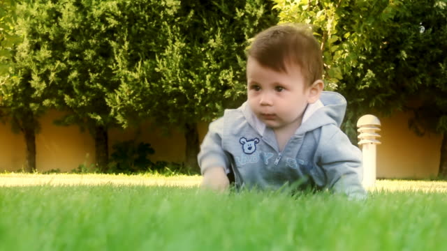 baby crawling on grass - baby boys stock videos and b-roll footage