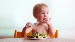 baby eats with pleasure steamed broccoli by fork, happy vegan kid, child on white background
