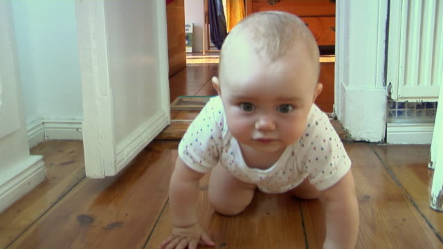 ms cu pov zo ha baby girl (6-11 months) crawling after camera through doorstep, berlin, germany - 生後6ヶ月から11ヶ月点の映像素材/bロール