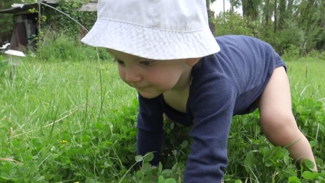 baby girl crawling in the grass on hot summer day - one baby girl only stock videos & royalty-free footage