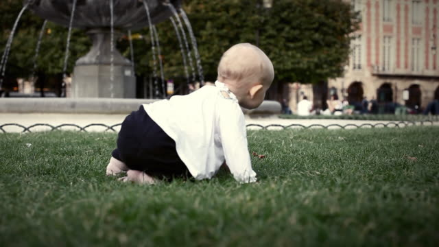 ms r/f baby girl (6-11 months) crawling on grass in park / paris, ile de france, france - 生後6ヶ月から11ヶ月点の映像素材/bロール