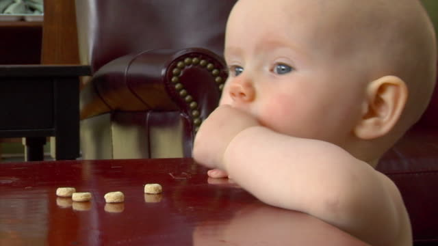 CU, Baby girl (6-11months) eating cheerios at table, Gloucester, Massachusetts, USA