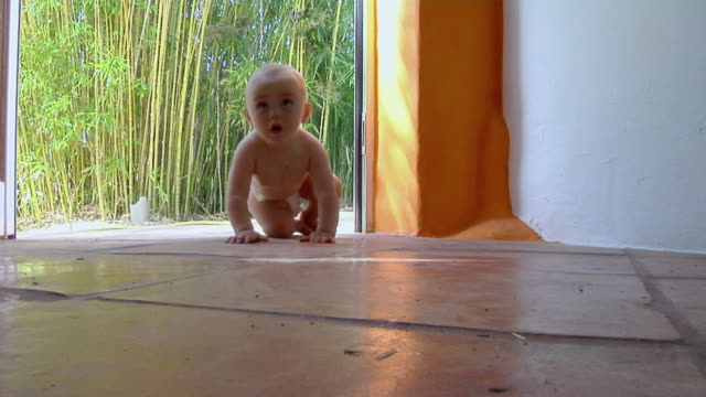 ws cu baby girl (6-11 months) in diaper crawling on floor towards camera, ibiza, spain - 6 11 months stock videos & royalty-free footage