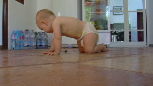 vidéos et rushes de ws baby girl (6-11 months) in diaper crawling on kitchen floor, ibiza, spain - 6 11 mois