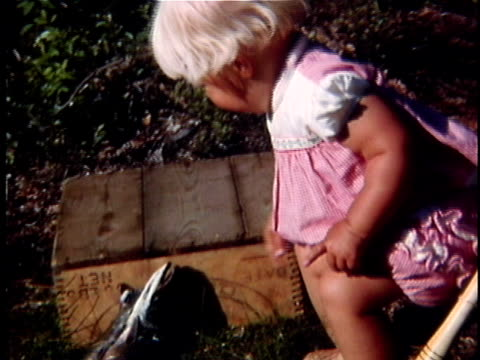 1963 ms composite baby girl petting dead fish, vermont, usa - baby girls stock videos & royalty-free footage