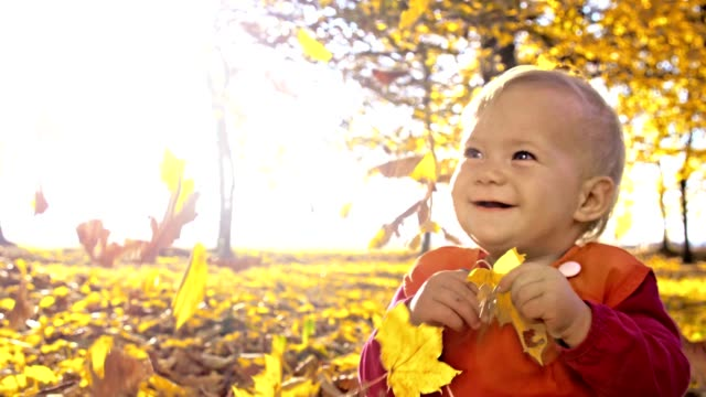 slo mo baby girl playing with autumn leaves - one baby girl only stock videos & royalty-free footage