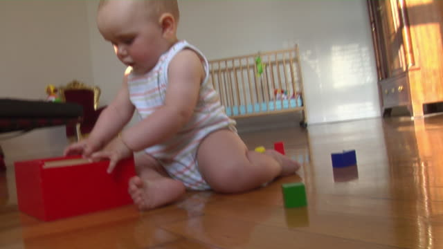 vídeos de stock, filmes e b-roll de ms pan baby girl (6-11 months) sitting on floor playing with wooden blocks, berlin, germany - 6 11 months