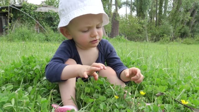 baby girl sitting on the grass in summer garden - crawling stock videos & royalty-free footage