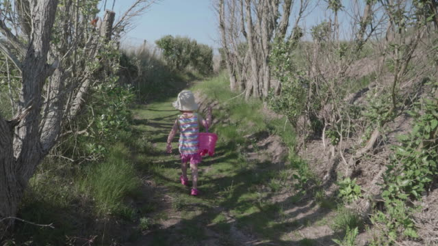 baby girl walk toward to the beach,donegal, ireland - baby girls stock videos & royalty-free footage