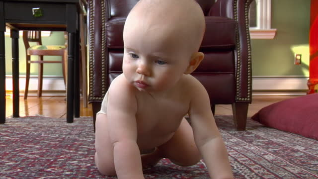 cu, baby girl (6-11months) wearing diaper crawling on carpet, gloucester, massachusetts, usa - 6 11 months stock videos & royalty-free footage