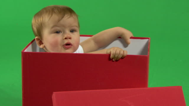 zo ms baby in a box - birthday gift stock videos & royalty-free footage