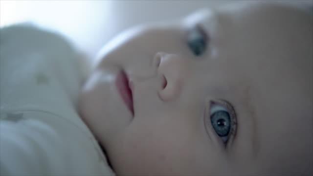 vidéos et rushes de ecu sm baby looking at camera - seulement des bébés