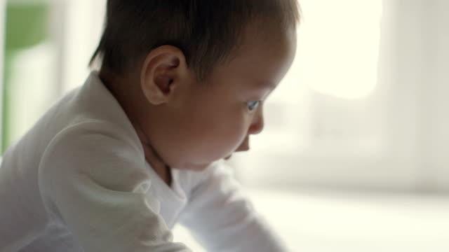 baby liegend auf dem bauch, die versuchen, ihren kopf zu halten - nur babys stock-videos und b-roll-filmmaterial