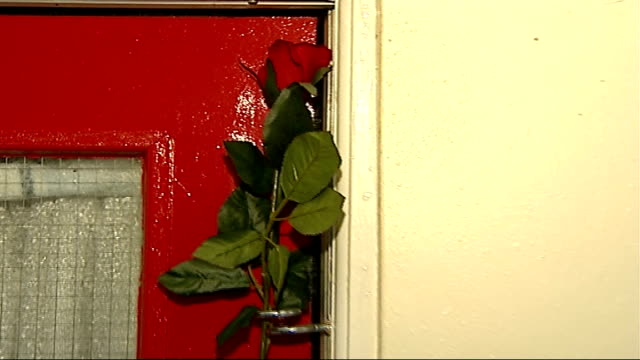 parents sentenced int single plastic red rose on door of flat where neo lived pull out to reporter to camera - single rose stock videos & royalty-free footage
