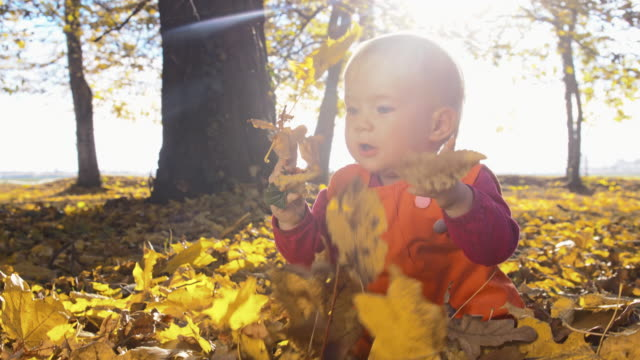 SLO MO Baby playing with autumn leaves