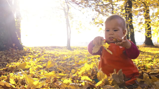 SLO MO Baby playing with dry autumn leaves