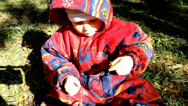 baby playing with flowers sitting on grass - warm clothing stock videos and b-roll footage