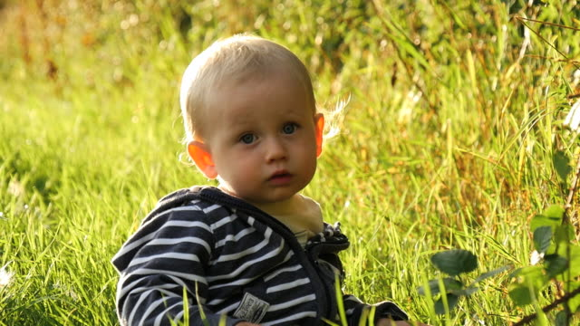 stockvideo's en b-roll-footage met baby plays in field and stares into camera in the evening light - one baby boy only