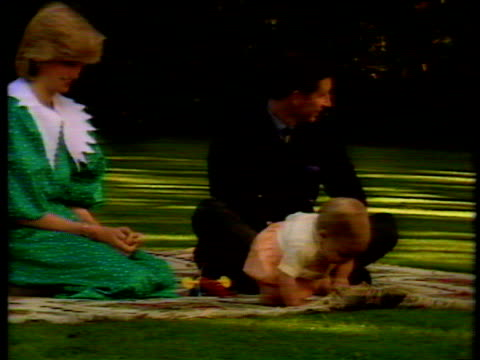 vídeos de stock, filmes e b-roll de baby prince william crawls over rug during photocall beside princess diana and prince charles who attempts to distract him with toy new zealand 23... - princesa diana