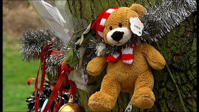 baby p's stepfather found guilty of raping 2 year old girl r12030924 london finchley ext general views and close ups of floral tributes soft toys... - 継父点の映像素材/bロール