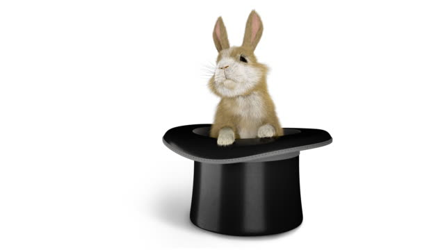 baby rabbit coming out of a magician's hat - emergence stock videos & royalty-free footage