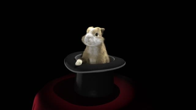 baby rabbit coming out of a magician's hat - top hat stock videos & royalty-free footage