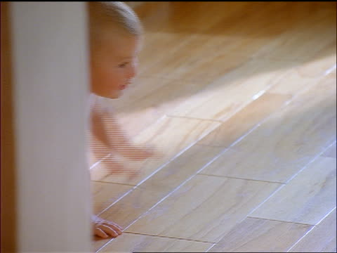 baby wearing diapers crawling on wooden floor indoors - crawling stock videos and b-roll footage