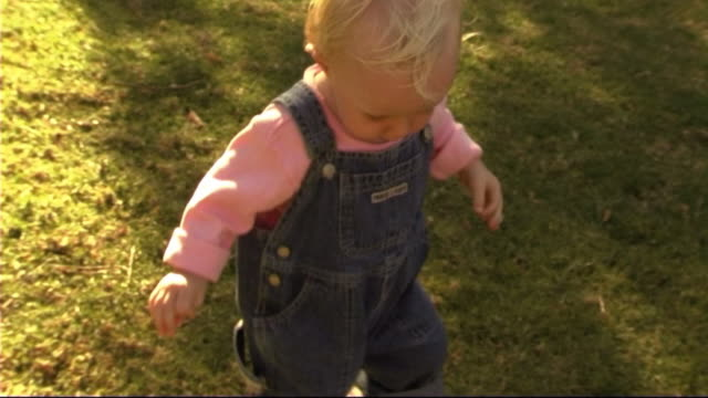 baby with teddy bear in park - only baby girls stock videos & royalty-free footage