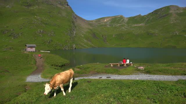 Bachalpsee, Grindelwald-First, Bernese Alps, Switzerland, Europe