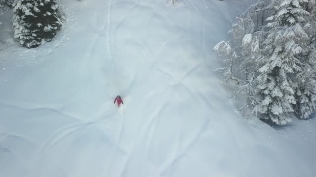 backcountry skifahrer absteigend berg, tiefschnee - georgia stock-videos und b-roll-filmmaterial
