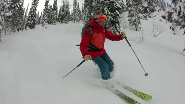 back country skiing through powder in forest - ski jacket stock videos & royalty-free footage