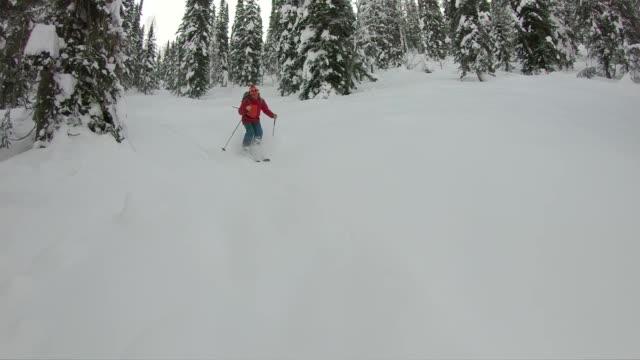 backcountry skifahren durch pulver im wald - skijacke stock-videos und b-roll-filmmaterial