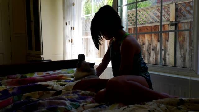 窓の前のベッドで猫をかわいがる十代の女性の4kビデオをバックライト - 雑種のネコ点の映像素材/bロール
