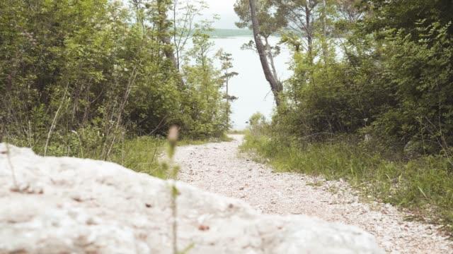 back man rider downhill mountain biking - downhill skiing stock videos & royalty-free footage