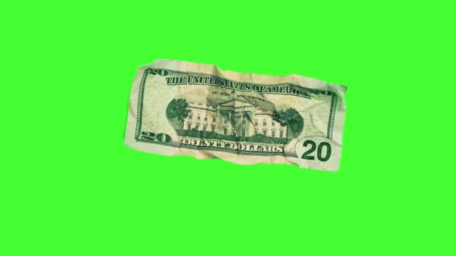 back of $20 dollar bill on chroma key - money politics stock videos & royalty-free footage